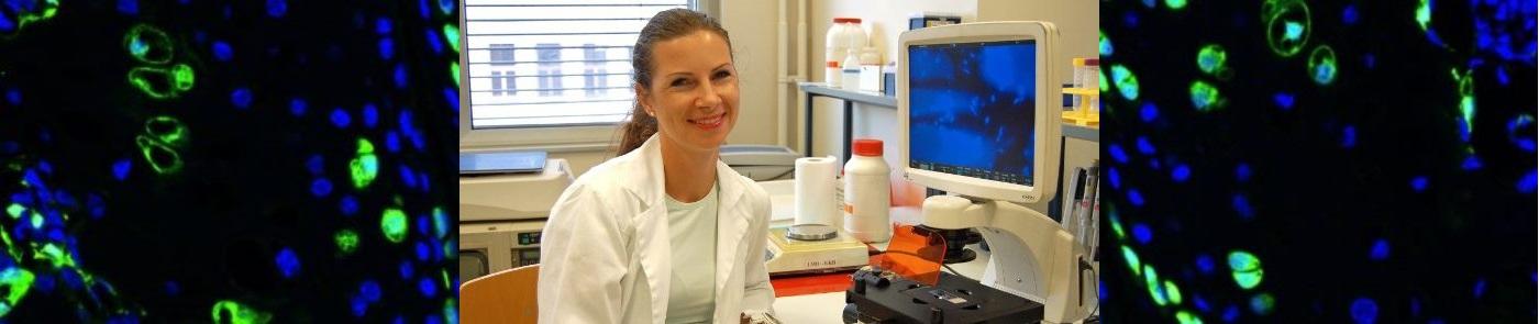 Janja Zupan - maticne celice so sposobne regenerirati hrustanec